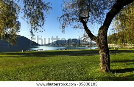 nature, morning of late summer on the lake, landscape