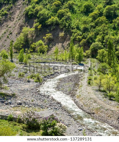 Nature of  green trees and river in Almaty, Kazakhstan,Asia