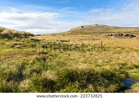 Nature of the Falkland Island, grass and sky - stock photo