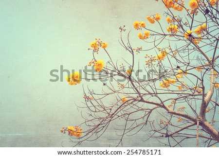 nature of vintage tree flower in summer ,canvas paper art texture - stock photo