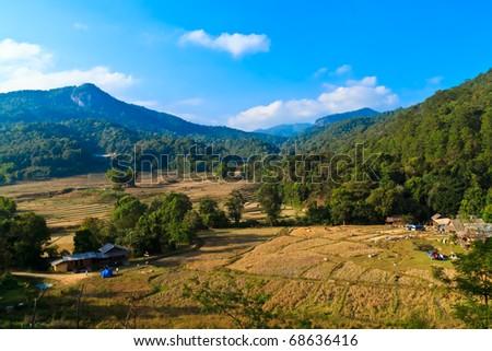 Nature on the mountain. - stock photo