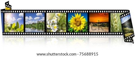 Nature photo with film strip isolated on white background - stock photo