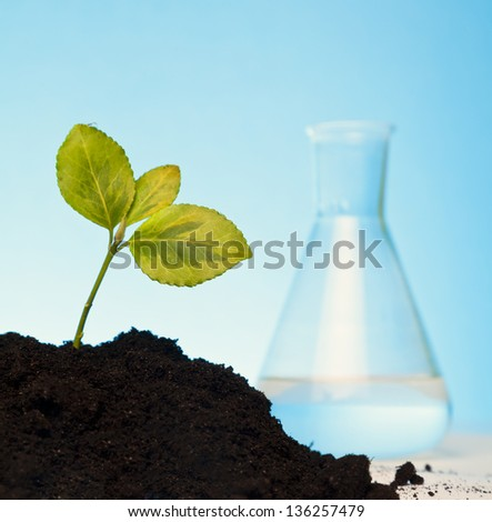 nature protection and organic concept - stock photo