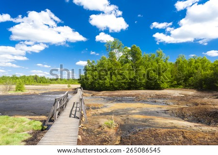 nature reserve called Soos, Czech Republic - stock photo