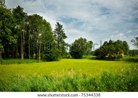 grassy meadows christian single men Grassy meadows gospel musicians  (latest itunes single  allow us the opportunity to show you excellence in performance while maintaining christian integrity.