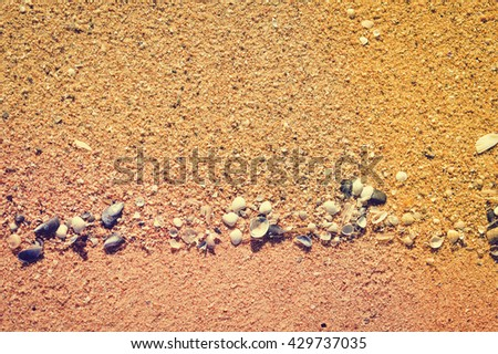 Nature sandy beach background with beautiful multicolored seashells