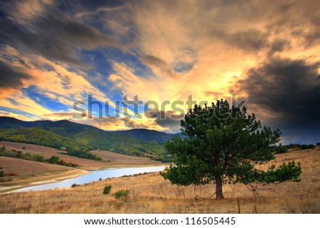 nature scenic HDR landscape with single tree near lake - stock photo