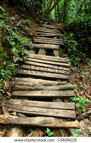 nature trail - stock photo