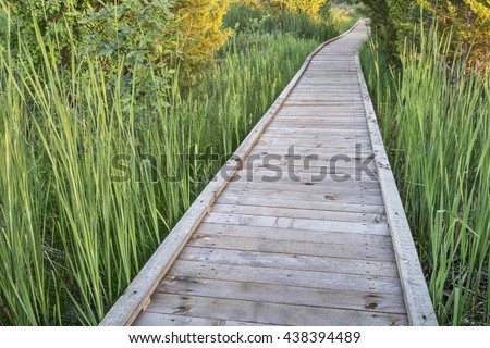 nature trail over swamp - wooden boardwalk path in a early summer scenery - a journey metaphor - stock photo
