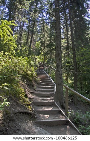 Nature Trail, starts at Edworthy Park and follows along the south side of the Bow River, Calgary, Alberta, Canada - stock photo