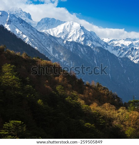 Nature view on the way to Chopta Valley in north Sikkim India - stock photo