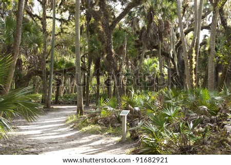Nature walk with plaque in an open forest area in Myakka River State Park in Florida. - stock photo