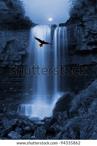 Natures capture, Bird of Pray hovers by stunning Waterfall silhouetted by the Moon