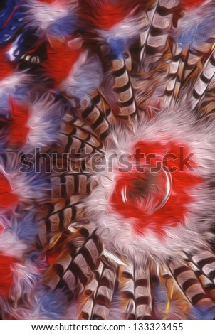 Navajo Dance Feather Wheel - stock photo
