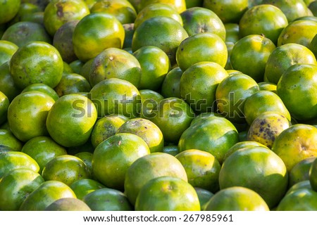 "Navel orange, Citrus sinensis or known as ""Limau Madu"" in Sabah Malaysian Borneo at market display under strong afternoon lights create hard shadow and taken selective focus. - stock photo"