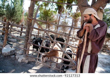 NAZARETH, ISRAEL - OCTOBER 29: A man dressed as a first-century herder tends his flock of goats at Nazareth Village, a representation of life at the time of Jesus in Nazareth, Israel, Oct 29, 2011. - stock photo