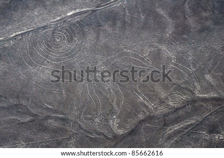 Nazca Lines - Monkey - Aerial View from a Plane