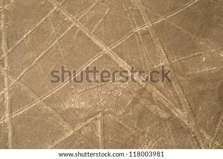 Nazca Lines, Peru - scorpion or hypnotized eye - stock photo