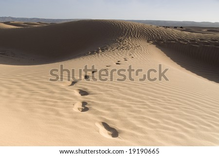 Near M'hamid, Morocco - stock photo