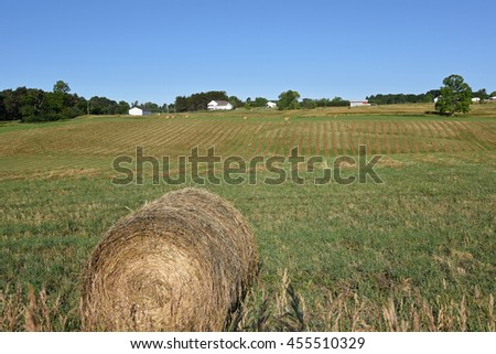 Neatly rolled bales of hay in the field in early summer in the Midwest. - stock photo
