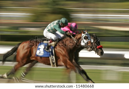 Neck and Neck Horse Race -- Abstract Motion Blur at Slow Shutter Speed