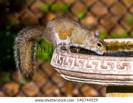 Needed A Drink - stock photo