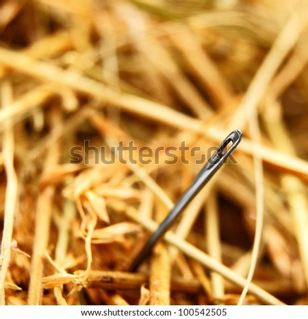 Needle and hay. - stock photo