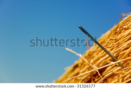 Needle in a haystack - stock photo