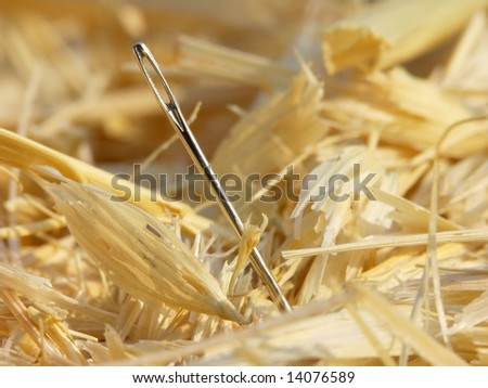 Needle in a haystack close-up.
