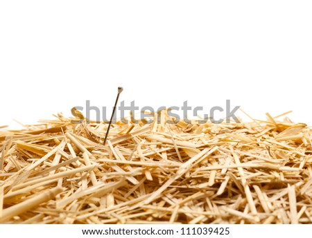 Needle in a haystack , Isolated - stock photo