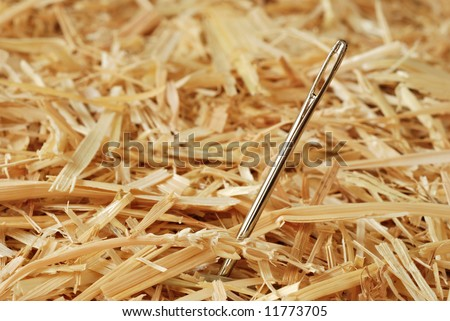 Needle in a haystack.  Macro with shallow dof. - stock photo