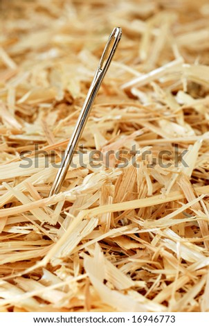 Needle in a haystack.  Macro with shallow dof - stock photo