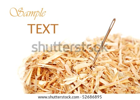 Needle in a haystack on white background with copy space.  Macro with shallow dof. - stock photo