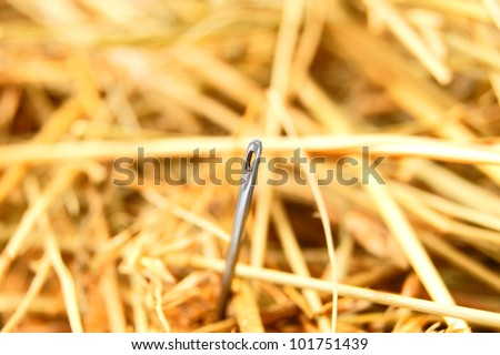 Needle in hay. - stock photo