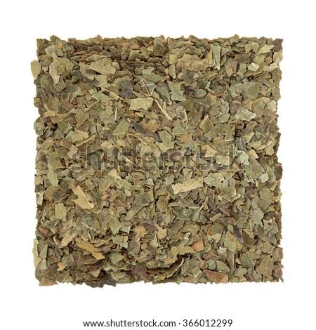 Neem herb used in ayurvedic alternative herbal medicine over white background. Azardirachta. - stock photo