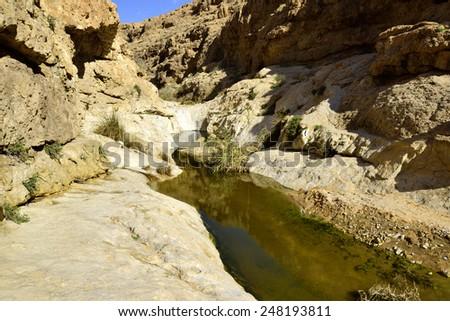 Negev wadi landscape after flood in winter season, Israel. - stock photo