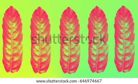 Neon Colorful Leaf Pattern Background Wallpaper