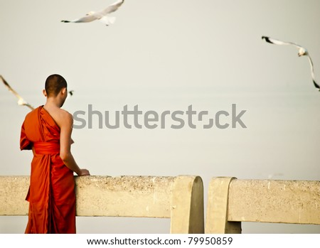 Neophyte looking the bird - stock photo