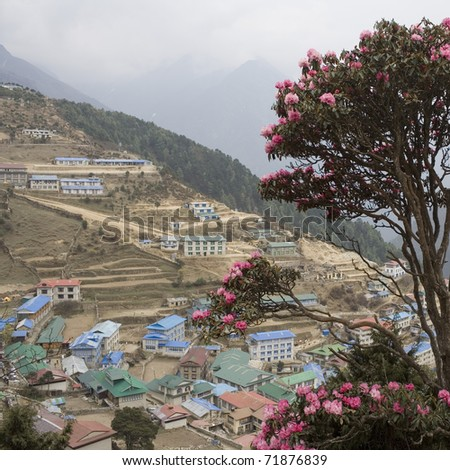 Nepalese landscape, Village and rhododendron - stock photo
