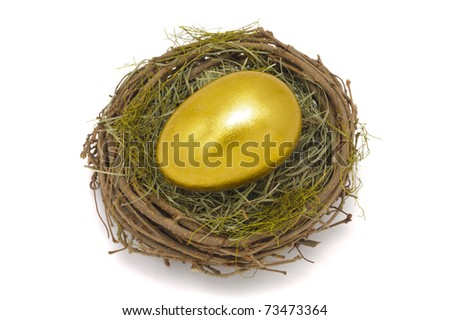 nest and golden egg isolated on white background