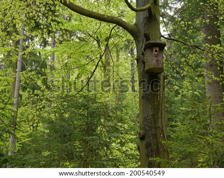 nest box for birds in the wood - stock photo
