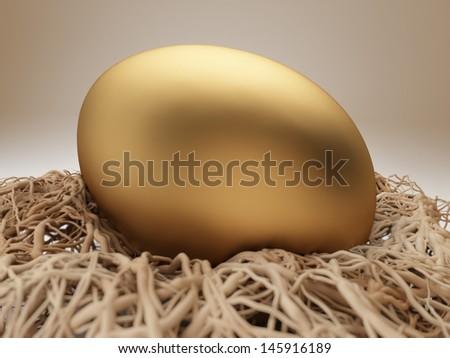 Nest Egg  - stock photo