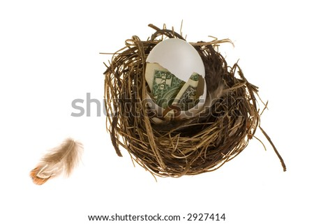 Nest Egg Concept - money in an egg shell. The egg is in a pretty nest on a white background. A small feather is nearby.