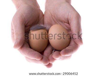 Nest egg in hands with feather - stock photo