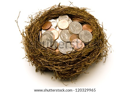 Nest Full of Money for Savings - stock photo
