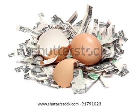 nest made of shredded dollar bank notes and broken eggshell - stock photo