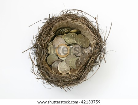 Nest of a bird with coins