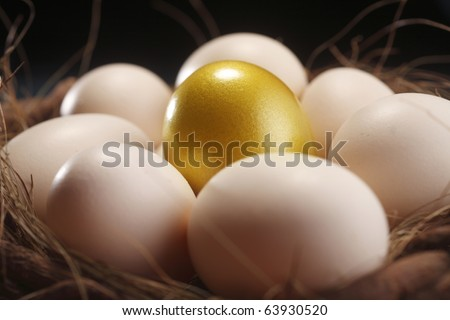 nest of egg with one golden egg - stock photo
