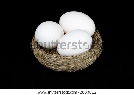 nest of eggs on black - stock photo