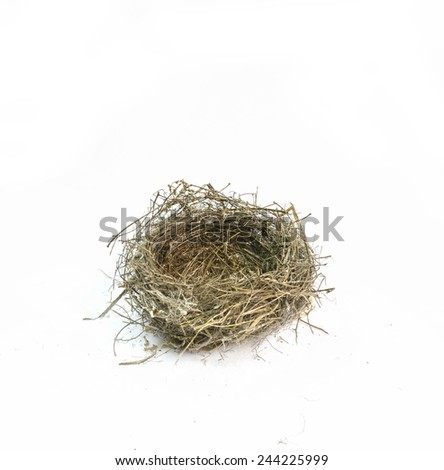 nest wild empty  - stock photo
